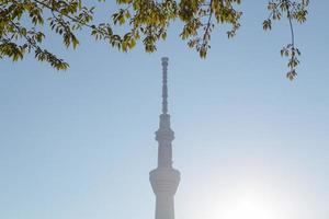 tokyo sky tree foto