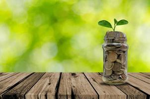 pot met munten met een plant die uit ontspruit foto