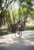 vintage fiets in natuurpark foto