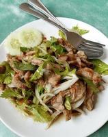 pittige varkenssalade