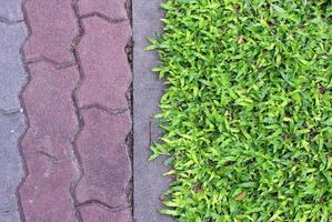 gras en baksteen