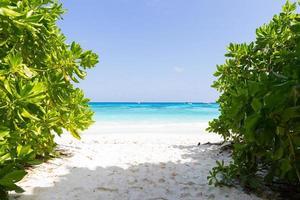strand in Thailand foto