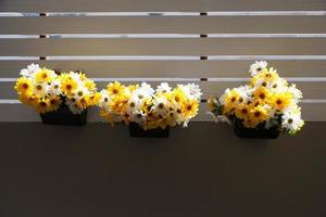 bloemen op een balkon foto