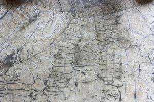 gebarsten grijze steen