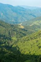 bos en bergen in Thailand