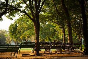 banken in het park