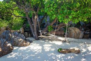schommel in een boom op een strand in Thailand foto