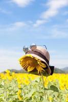 hoed en zonnebril op een zonnebloem foto