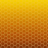 zeshoekige celtextuur honingraat foto