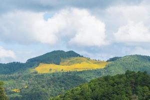berg en lucht in de zomer