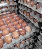 kratten met eieren foto