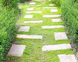 pad in de tuin