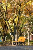 bankje in het park in tokyo, japan
