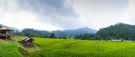 rijstvelden in de bergen in thailand
