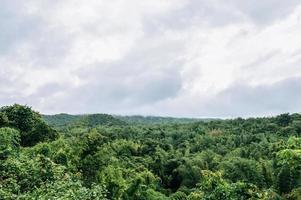 de zee, de lucht en het weelderige bos in Thailand foto