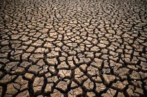 dor land met droge en gebarsten grond foto