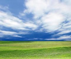 blauwe lucht en groen gras foto
