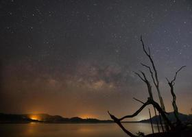silhouet van dode bomen naast een reservoir met de Melkweg op de achtergrond