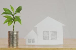 stapel munten met plant en papier huis foto