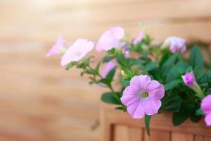retro home decor en bloemen en op een wandplank
