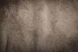 huid van een neushoorn foto