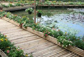 bamboe brug met bloem op vijver foto