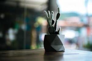 cactussen in potten, selectieve aandacht foto