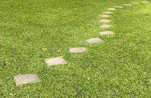 stenen pad op het groene gras foto