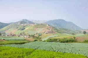 boerderij in de bergen