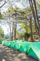 groene tenten op het gazon in Thailand