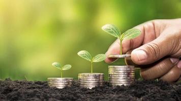 menselijke handen met geld en bomen groeien op geld investeringen financiële groei concept foto