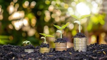 een stapel munten met groene planten hangt af van het concept van zakelijk en financieel succes of geldgroei