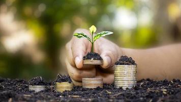 hand van de investeerder met een muntstuk met een boom die groeit op het concept van financieel en investeringssucces foto
