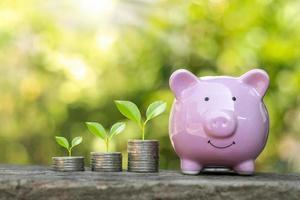 het planten van een boom op de munt is een financieel concept, investeren en sparen voor de toekomst foto