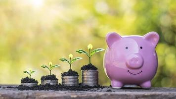 de groeiende boom op de munt bevat het spaarvarken dat het concept van bedrijfsgroei, geldgroei en geldbesparing vertegenwoordigt foto