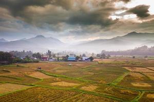 rijstterras met een bewolkte hemel foto
