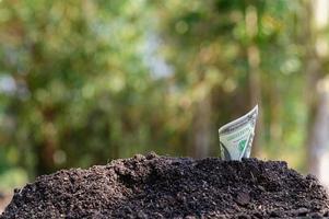 de groei van het financiële bedrijf foto