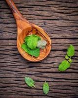 citroenmelisse bladeren foto