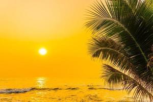 palmbomen aan de oceaan