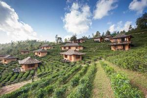 ruggegraten hutten op heuvel onder bewolkte hemel foto