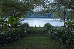 pad naar een bank in de buurt van water foto