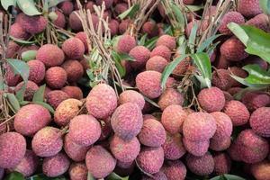 groep van lychee fruit foto