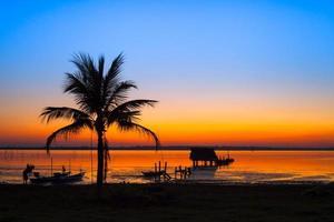 kleurrijke zonsondergang met een palmboom