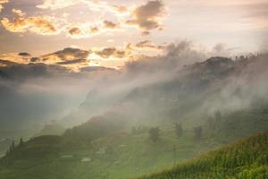 rijstterras op heuvel bij zonsopgang foto