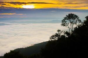 mist bij zonsopgang foto
