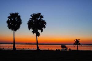 twee palmbomen bij zonsondergang