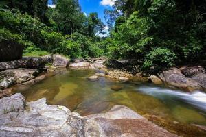 water in het bos foto