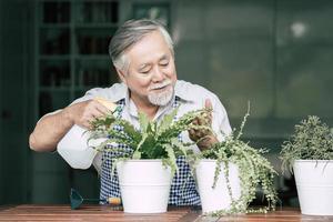 senior man plant thuis een boom