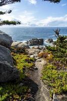 rotsen in de oceaan aan de kustlijn van Big Sur foto