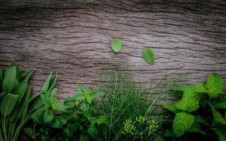 kruiden op hout in het donker foto